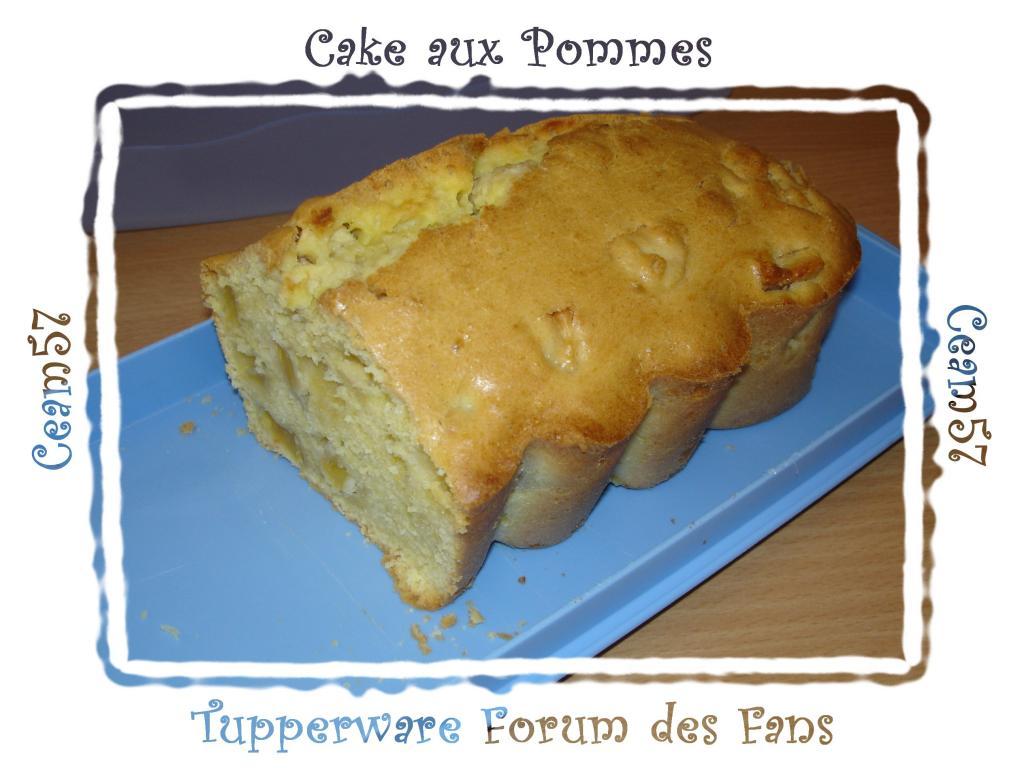 http://img49.xooimage.com/files/8/1/b/cake-aux-pommes-13d3dea.jpg