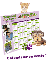 Calendrier association protection animale
